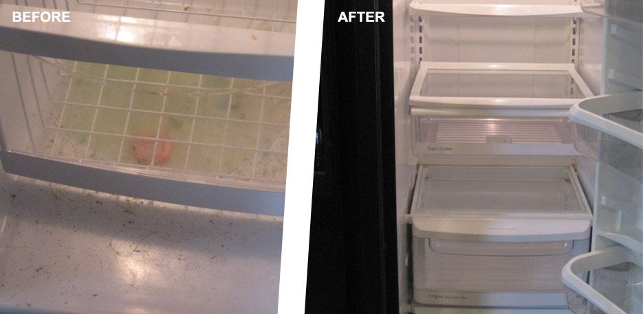 kitchen fridge cleanup